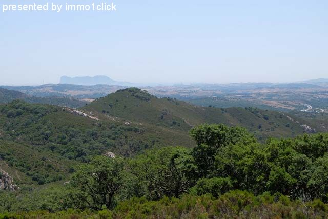 Hunting Estate, Spain, Andalusia, Sotogrande for sale