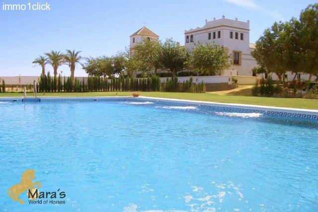 Hacienda Hotel Sevilla Andalusia for sale - garden and pool