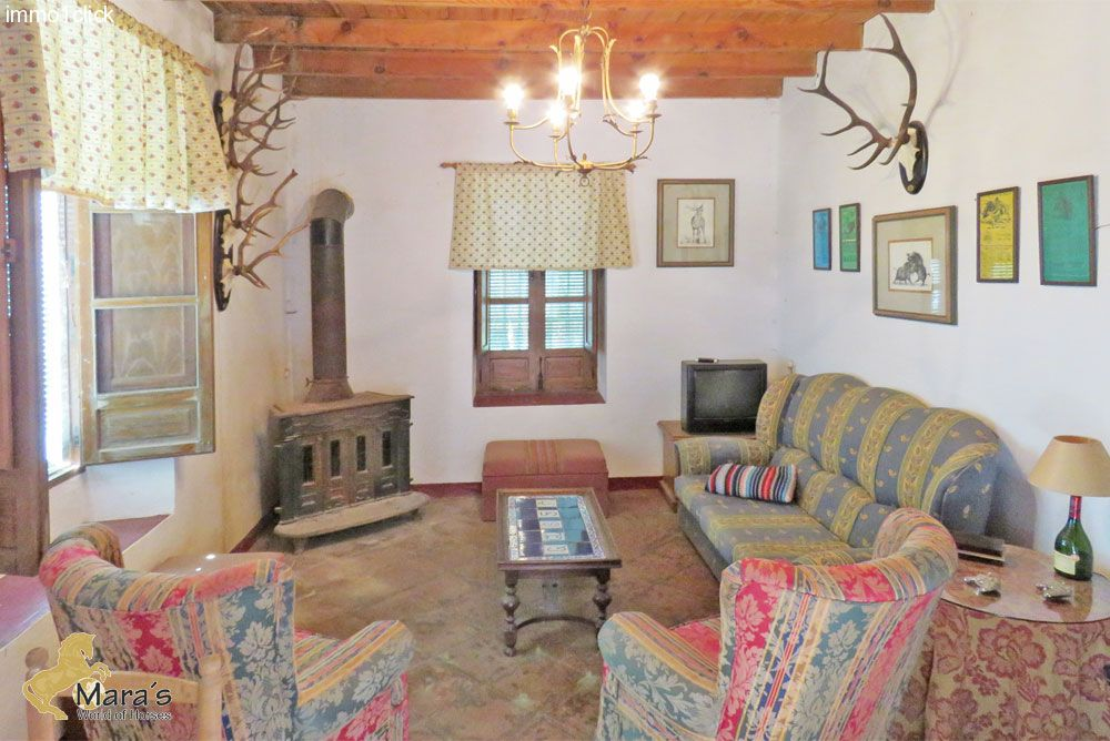 Finca, country property, farm with corc, Sevilla, Huelva, Andalusia for sale
